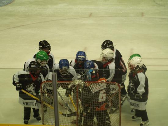 L'équipe Moustiques 200-2009